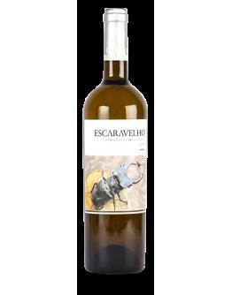 Escaravelho Branco 2018